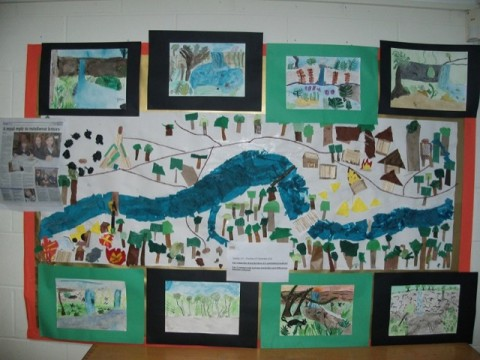 Rain Forest work Year 5