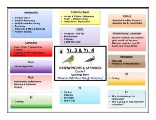 thumbnail of Greenfinch & Lapwing Website Curriculum Overview – Summer Cycle 1
