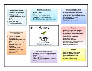 thumbnail of Wagtails Website Curriculum Overview – Summer Cycle 1