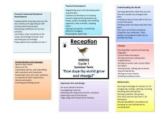 thumbnail of Wren curriculum overview Summer Cycle 1