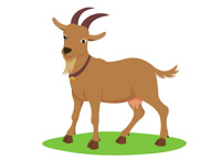 Free Farm Animals - Clip Art Pictures - Graphics - Illustrations